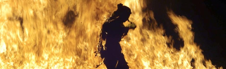 """phoenix-Themenwoche """"Krieg und Frieden"""" (4)"""
