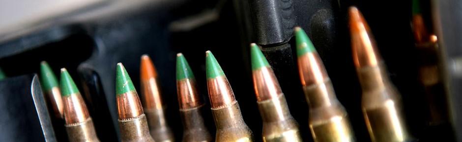 Bald gemeinsame Landmunition für 19 Staaten