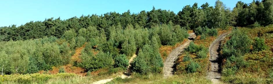 Nationales Naturerbe dank deutscher Wiedervereinigung